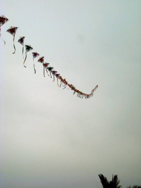 Colored kites in Sai Kung