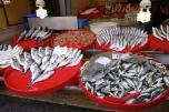 Fish outside the Egyptian Market
