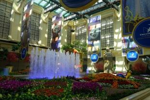 Dreamworks cross-marketing in Cotai Strip Macau _ expatlingo.com