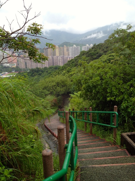 View past the jungle to Tai Wo.