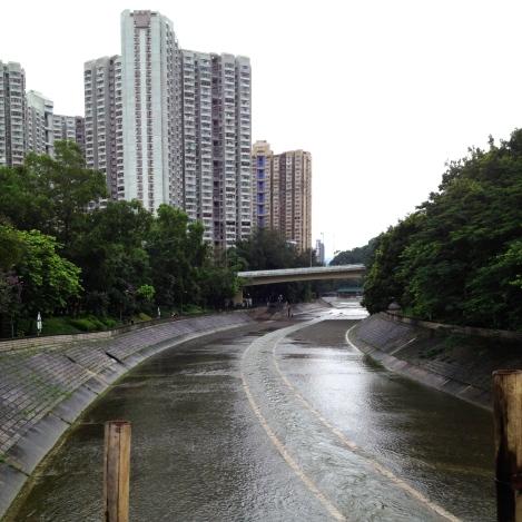 Tai Po River _ expatlingo.com