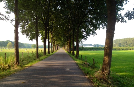 Utrecht outskirts _ expatlingo.com