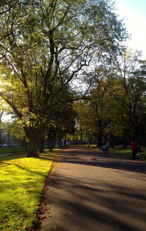 First stretch through Wilhelmina Park.
