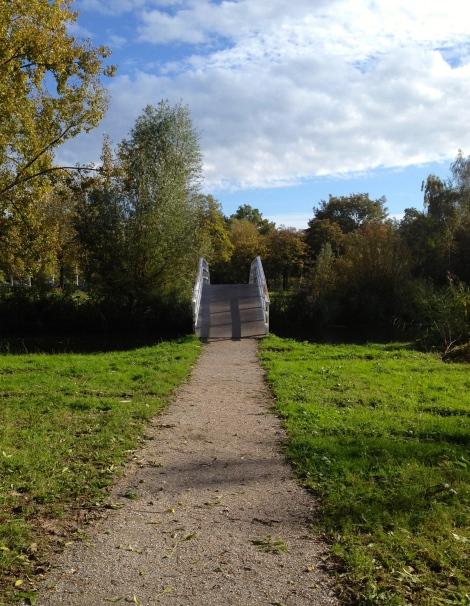 The one hill of my run: this tiny bridge.