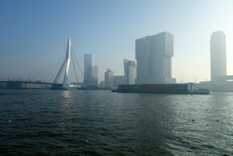Erasmus Bridge and Rotterdam skyline _ expatlingo.com