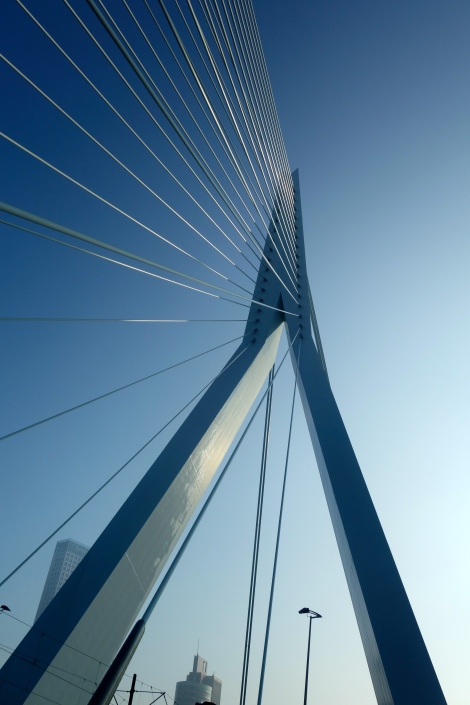Detail of Erasmus Bridge Rotterdam _ expatlingo.com