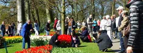 Keukenhof photos _ expatlingo.com