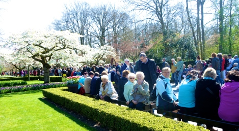 crowded paths at Keukenhof _ expatlingo.com