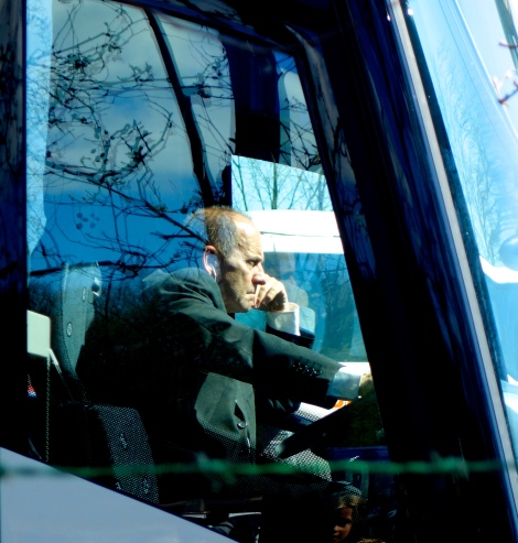 Bus driver in Keukenhof traffic _ expatlingo.com