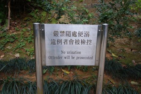 Mui Shue Hang Playground, Tai Po